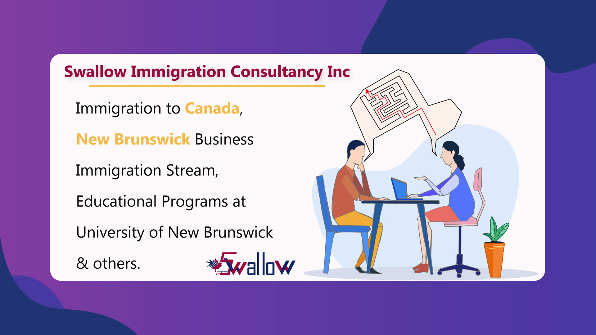 Swallow Immigration